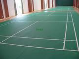 惠州市大亚湾羽毛球俱乐部